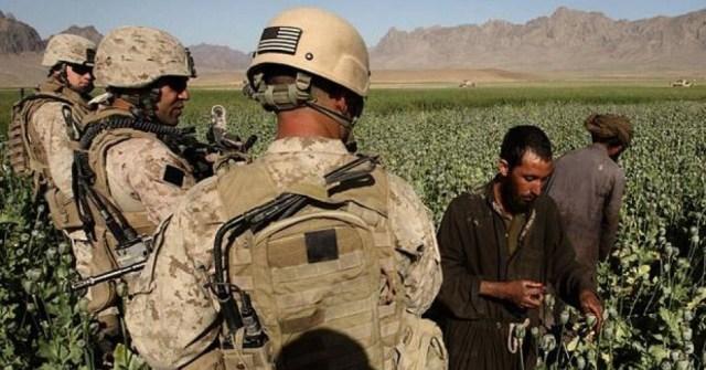 us-marine-patrol-o_1396931i